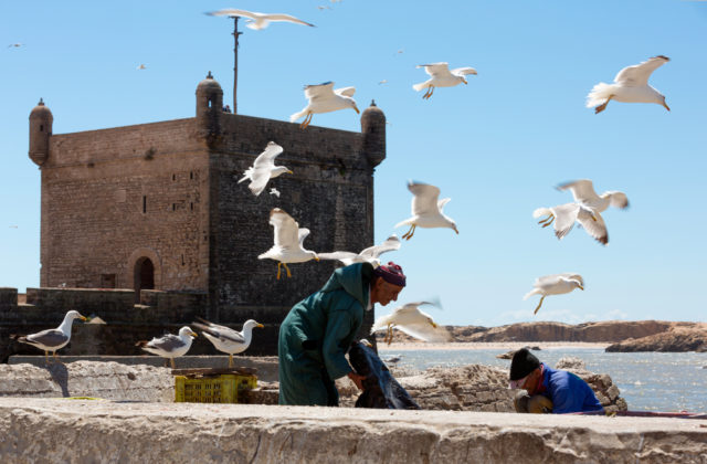 Essaouira morocco's hip side